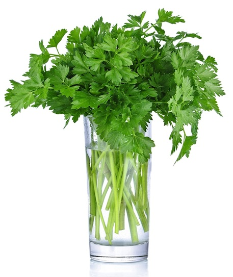 Parsley bunch in a glass copy