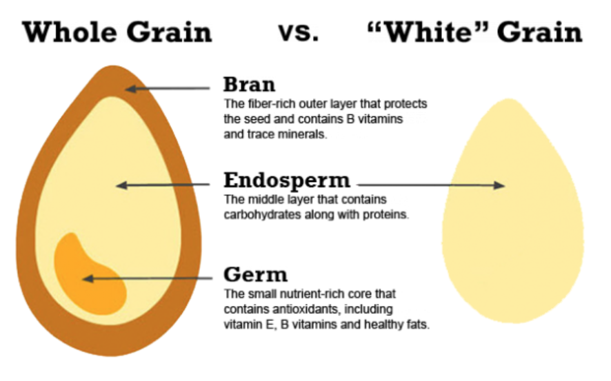 Anatomy of a grain