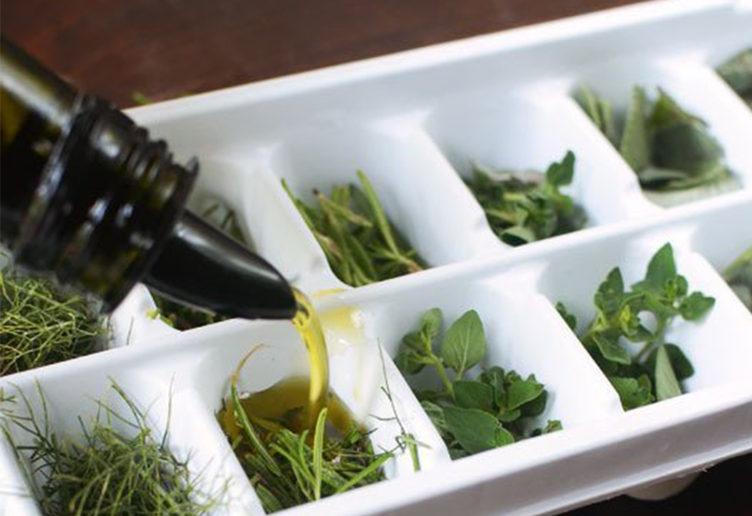 herbs ice cube tray