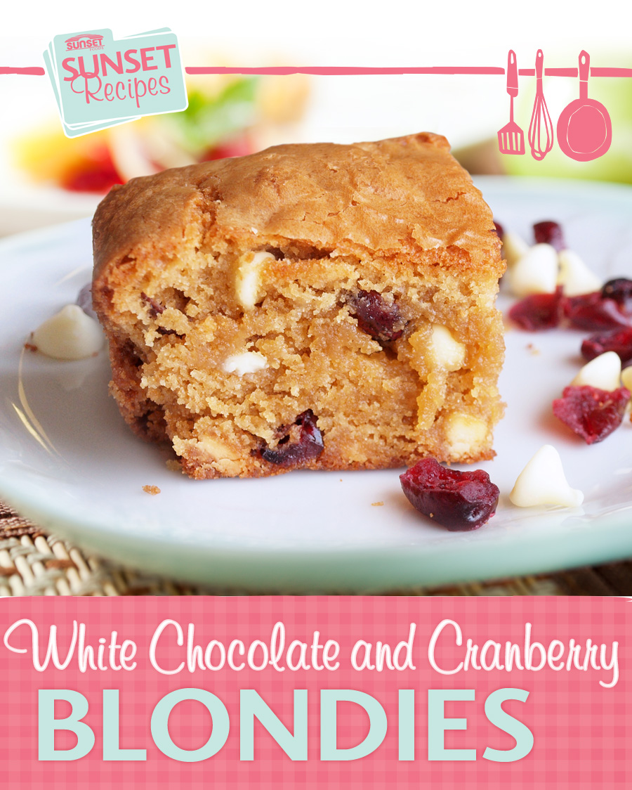 White chocolate cranberry blondie bar