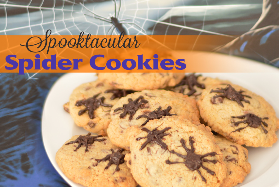 A plate of Spider cookies