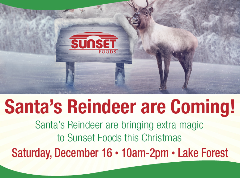 Reindeer event flyer
